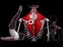 БОЛИТ СПИНА в области лопаток и грудного отдела 🔴 Как убрать триггерные точки в трапеции