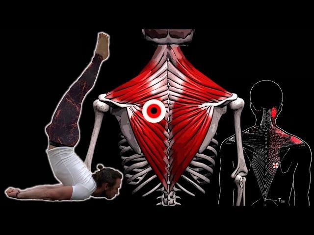 БОЛИТ СПИНА в области лопаток и грудного отдела 🔴 Как убрать триггерные точки в трапеции ⭐ SLAVYOGA