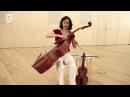 Histoires d'instruments la viole de gambe