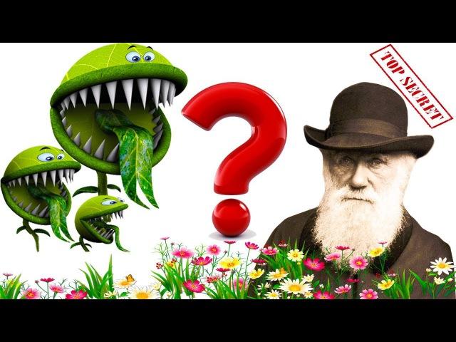 Отвратительная тайна Дарвина раскрыта. Развитие покрытосеменных (цветковых) растений на Земле.