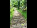 Волшебная лестница ведущая на Райский пляж mp4