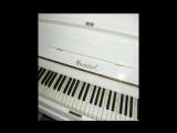 В.А. Моцарт  'Мелодия сердца'.mp4