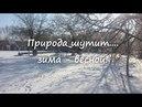 Природа шутит, - зима весной! Мороз и солнце - день чудесный....21 марта