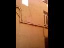 Егор Молчанов Live