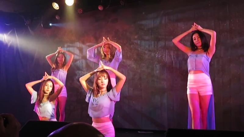 2017.7.23 stellar summer Live week 2017~夏祭り~ セフィロトの樹 (The tree of the sephiroth)