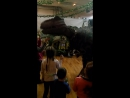 ДиноПарк... Живой динозавр Гоша