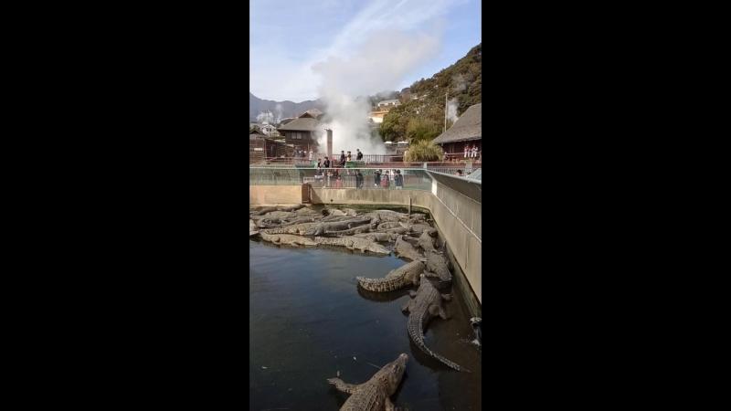 9 кругов ада. Беппу, Япония