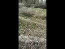 Кубат Сансызбаев Live