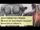[Борис Цацулин] АНАТОМИЯ РАСТЯЖКИ. Алкоголь, или гибкость за 5 минут? Мышцы, сухожилия и связки
