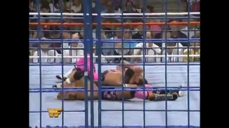 (WWE Mania)1994.WWF - Bret Hart vs Owen Hart (WWF SummerSlam 1994)