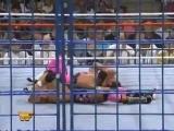 1994.WWF - Bret Hart vs Owen Hart (WWF SummerSlam 1994)