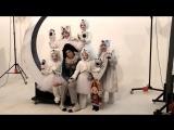 Backstage: Оскар и Розовая дама - ПРЕМЬЕРА 14 октября - БКЗ