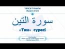 «Тин»суреси