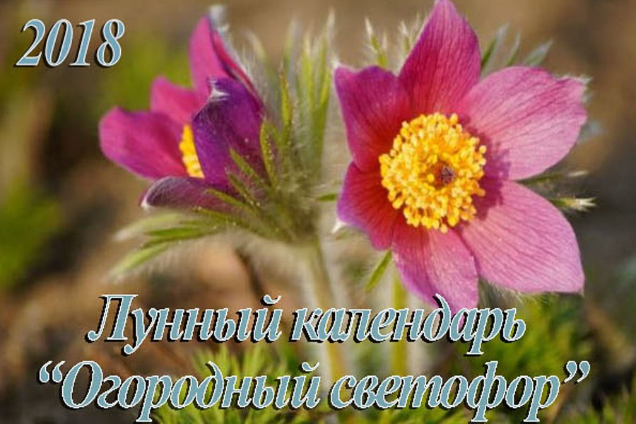 Лунный календарь садовода и огородника на 2018 год