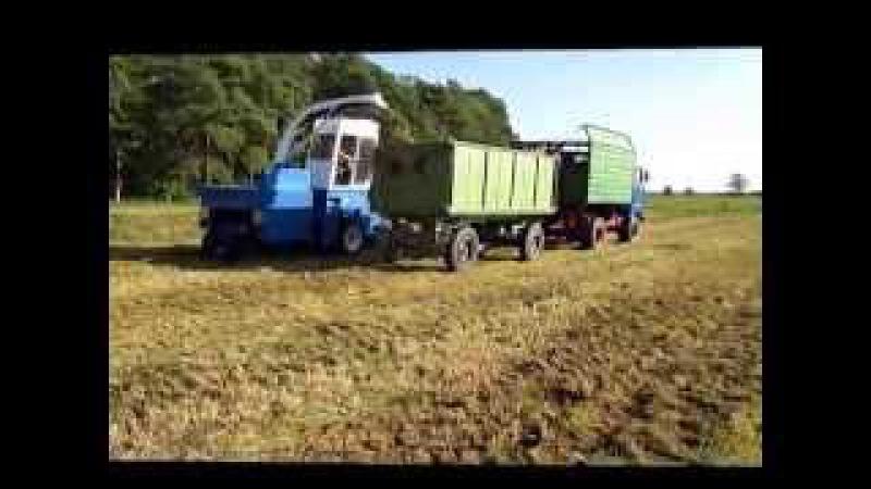 LPG Rote Rübe Gras häckseln mit IFA W 50 und Fortschritt E 281