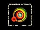 Daevid Allen, Banana Moon 1971 vinyl record