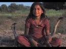 Пригрела змею девочка из Индии дружит с королевскими кобрами — и жива