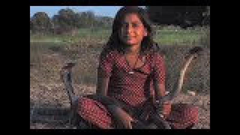 Пригрела змею: девочка из Индии дружит с королевскими кобрами — и жива