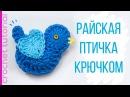 Пасхальные поделки Вязаные игрушки Райская птичка крючком