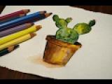 Кактус акварелью рисуем растения how to draw plants, cactus
