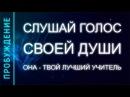 ПРОБУЖДЕНИЕ 4. СЛУШАЙ ГОЛОС СВОЕЙ ДУШИ, ОНА - ТВОЙ ЛУЧШИЙ УЧИТЕЛЬ (Андрей и Шанти Ханса)