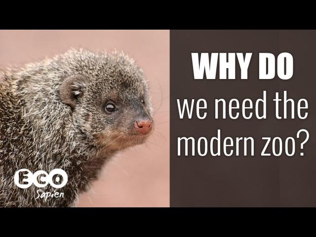 Why do we need the modern zoo?