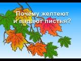 Обучающий мультфильм - Почему желтеют и падают листья Развивающий мультик для детей