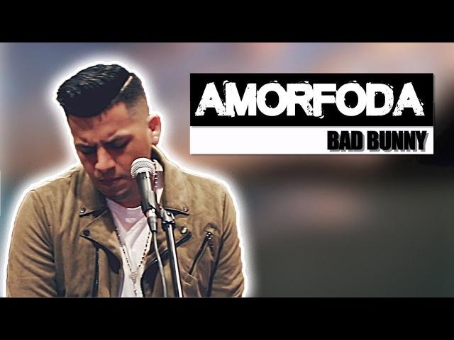 Bad Bunny - Amorfoda (English - Ingles Version) Letra - Lyrics