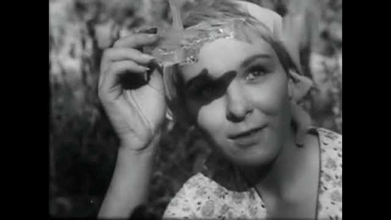 Закон тайги (1965)