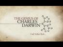 3. Бог наносит ответный удар  God strikes back (2008) Гений Чарльза Дарвина  The Genius of Charles Darwin