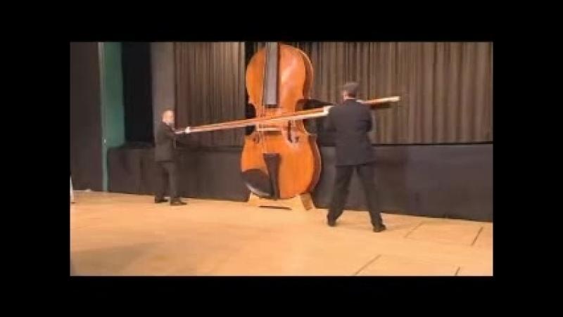 Самая большая скрипка - в книге рекордов Гинесса.