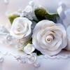 Декор украшение оформление свадеб и праздников