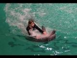 Дельфинарий. Часть 1. Плавание с  черноморским дельфином