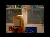Alf Quote Season 1  Episode  20 Кнопка
