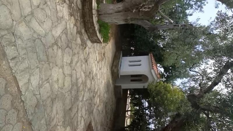 Лингвистический лагерь в Греции. Английский для детей в Самаре.