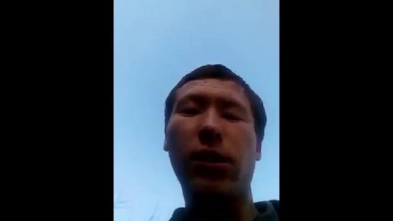 Видео-отзыв о работе 5