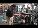 ARNOLD WORK AT GOLD'S GYM