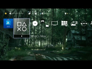 The Last of Us Part II Stop Sign - PS4 Dynamic Theme