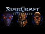 StarCraft Remastered Brat_OK vs Dewalt (Showmatch)13.10.2017 - Pomi