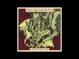 Necromorph - Under The Flag FULL ALBUM (2016 - Death Metal Grindcore Crust)