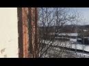 Утренний прогноз от волшебника Ивана Кулебякина