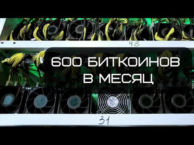 Майнинг ферма самая большая в России.Первое видео.Мы начинаем.