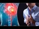 Women Heart Attack Symptoms Healthy Living Tips Heart Attack Symptoms Arm Nutritional Tips Heart