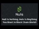Nuls обзор биткоин