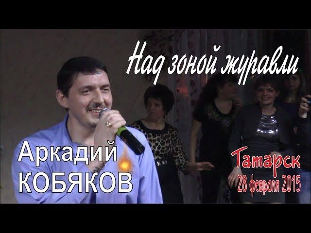 Аркадий КОБЯКОВ - Над зоной журавли (Татарск, 28.02.2015)
