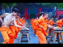 One month in Fawang ◊◊◊ Shaolin Kung Fu ◊◊◊ SUMO in China
