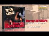 Виктор Петлюра - Парень в кепке (Audio)