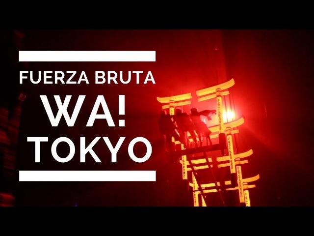 Tokyos Fuerza Bruta Wa! Sensory Experience