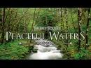Jeremy Soule Morrowind Peaceful Waters 90 Min Stream Ambience