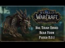 Kul Tiran Druid Bear Form Battle for Azeroth Patch 8 0 1